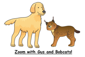 Zoom with Gus and Bobcats!